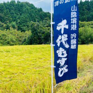 千代むすび Rice Field