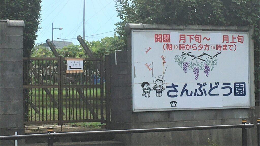 大門 さんぶどう園